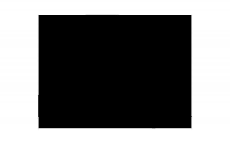 Delta Diemaking logo